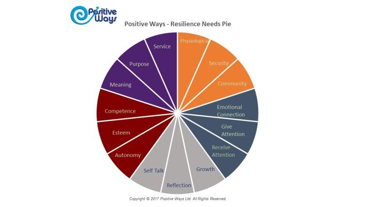 Resilience needs pie 15 copyright