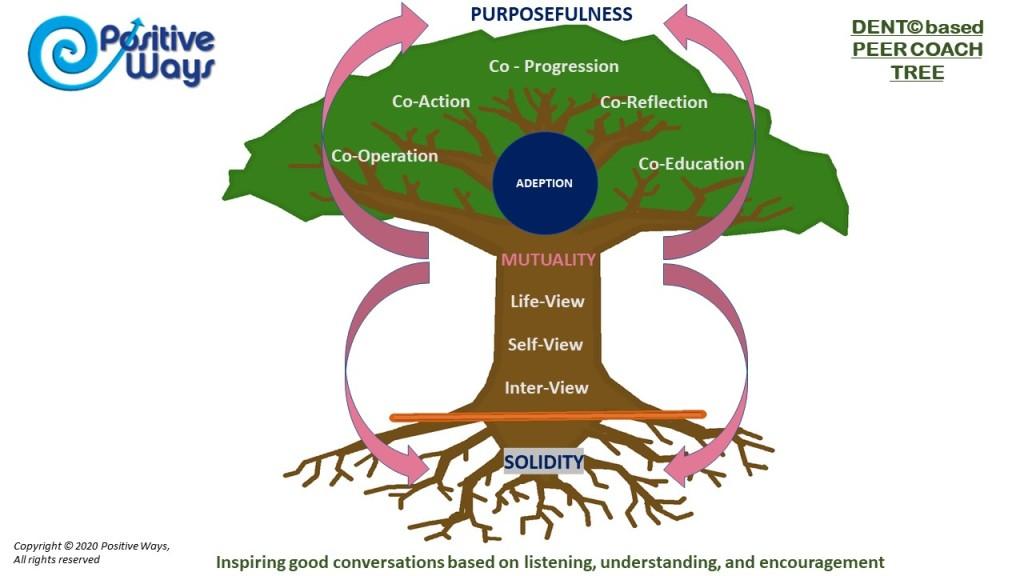 DENT Peer Coaching Tree